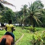 Photo de Caribe Horse Riding Club