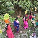 Photo of Indian Panorama