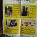 Azienda Agricola Biologica IL Frantolio DI D'amico Pietro Photo
