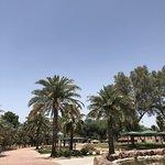 صورة فوتوغرافية لـ Al Areen Wildlife Park & Reserve
