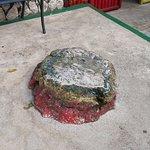 Pedra da meditação