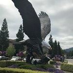 Eagle at 7 Feathers Casino