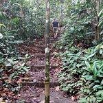 صورة فوتوغرافية لـ Tawau Hills Park