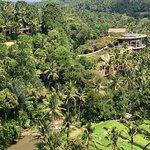 Foto de The Sayan House
