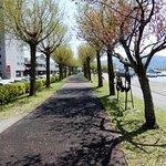 Suwa City Kohan Park照片