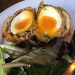 Scotch Egg Starter