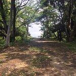 ภาพถ่ายของ Shimoda Park