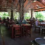 Fantastic Breakfast and dinner in an  open air cool and romantic setting.