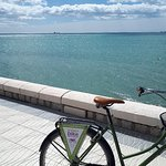Photo of Malaga Bike Tours & Rentals by Kay Farrell