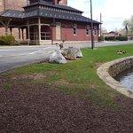 Φωτογραφία: Lititz Springs Park