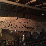 Foto de Warung Baby Monkeys