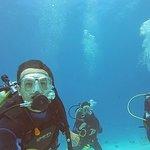 Foto de Pluto Dive