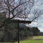 Foto Blairgowrie Golf Club