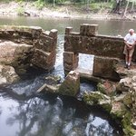 Suwannee River State Park Photo