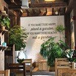 صورة فوتوغرافية لـ Evergreen Organics Cafe