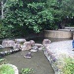 宜蘭礁溪溫泉照片