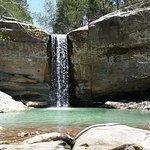 Billede af Jackson Falls Trail