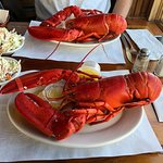 Huge delicious 2 pound lobsters