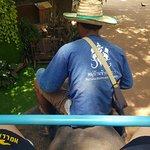 หมู่บ้านช้างพัทยา ภาพถ่าย