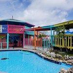 Nipper's pool