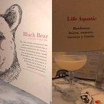 Foto de Black Bear