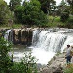 Photo of Haruru Falls