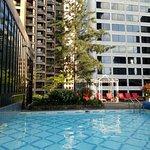 半室外半室內泳池與室外花園