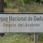 Foto de Parque Nacional de Donana
