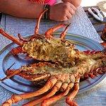 Fresh Lobster, fantastic!