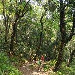 hiking the way back