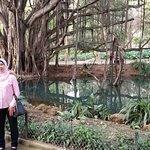 Photo of Le Jardin d'Essai du Hamma