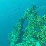 Billede af Ozeanic Caribbean & H2O Scuba Diving Center
