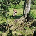 Photo of Monkey Jungle and Zip Line Adventures