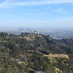 Griffith Observatory from Griffith Park