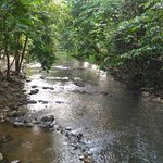 Riverside Janda Baik Foto