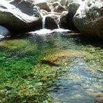 Bild från Gorges de la Restonica