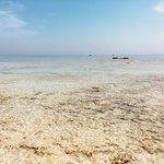 Foto di Giftun Islands