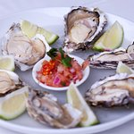 6 Oysters R99