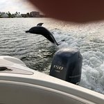 Island Time Dolphin and Shelling Cruises Foto