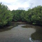 ภาพถ่ายของ วนอุทยานปราณบุรี
