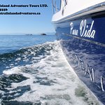 Foto de Central Island Adventure Tours Ltd.