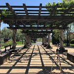 Views of the winery grounds