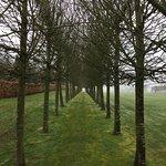 Gardens, Houghton Hall
