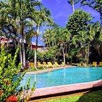 Área de la piscina y jardín