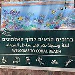 Photo de Coral Beach Nature Reserve