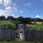 Bild från Bhavana Organic Farm + Cooking School