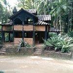 """Casa do Tarzan"""