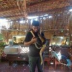 El responsable técnico te ayuda a poner la serpiente en tu cuello.