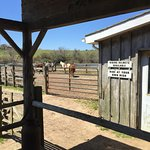 صورة فوتوغرافية لـ Deep Hollow Ranch