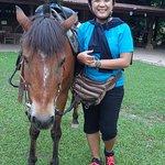 Foto di The Happy Ranch Horse Farm